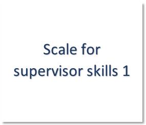 Supervisor skills 1