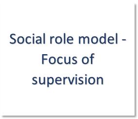 social roles model - F
