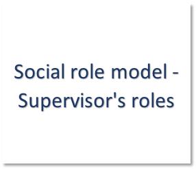 social roles model - S